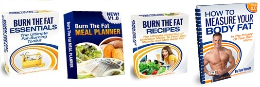 burn the fat program review