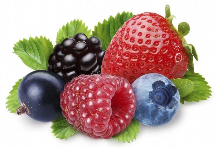 Fat Burning Foods -berries